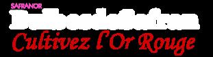 logo_bds